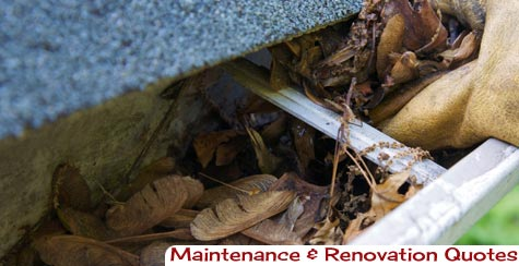 Gutter Clearing and Leaf Removal Gateshead